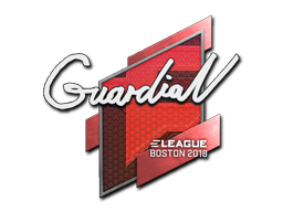 Наклейка | GuardiaN | Бостон 2018
