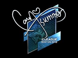 Sticker   Summer (Foil)   Boston 2018