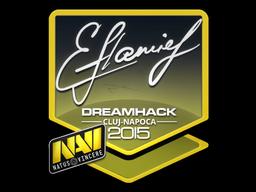 Наклейка | flamie | Клуж-Напока 2015