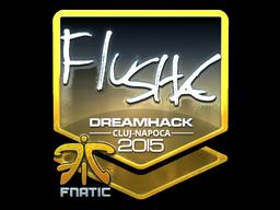 Sticker | flusha (Foil) | Cluj-Napoca 2015