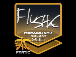 Sticker | flusha | Cluj-Napoca 2015