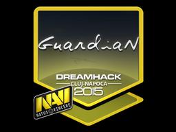 Наклейка | GuardiaN | Клуж-Напока 2015