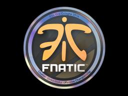 Sticker | Fnatic (Holo) | Cologne 2014