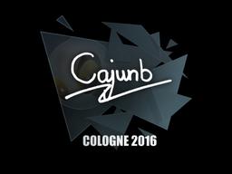 Наклейка | cajunb | Кёльн 2016