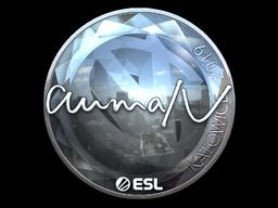 Sticker   aumaN (Foil)   Katowice 2019